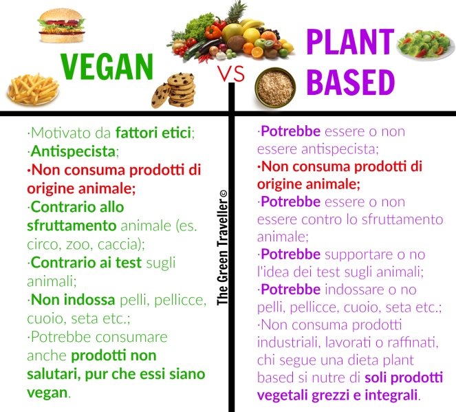 vegan vs plant based.jpg